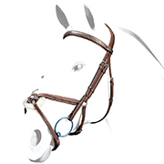 Equipe No Stress Grackle Bridle w/Clincher Browband