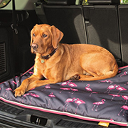 Shires Digby&Fox Waterproof Dog Bed