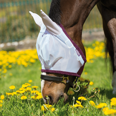 Amigo™ Fine Mesh Fly Mask with Ears