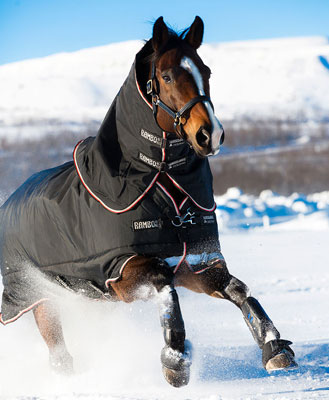 Horseware Blankets