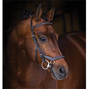 Rambo® Micklem Deluxe Competition Bridle
