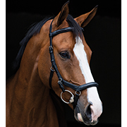 Rambo® Micklem Deluxe Competition Bridle and Rubber Reins
