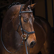Rambo® Micklem Diamante Show Bridle and Rubber Reins