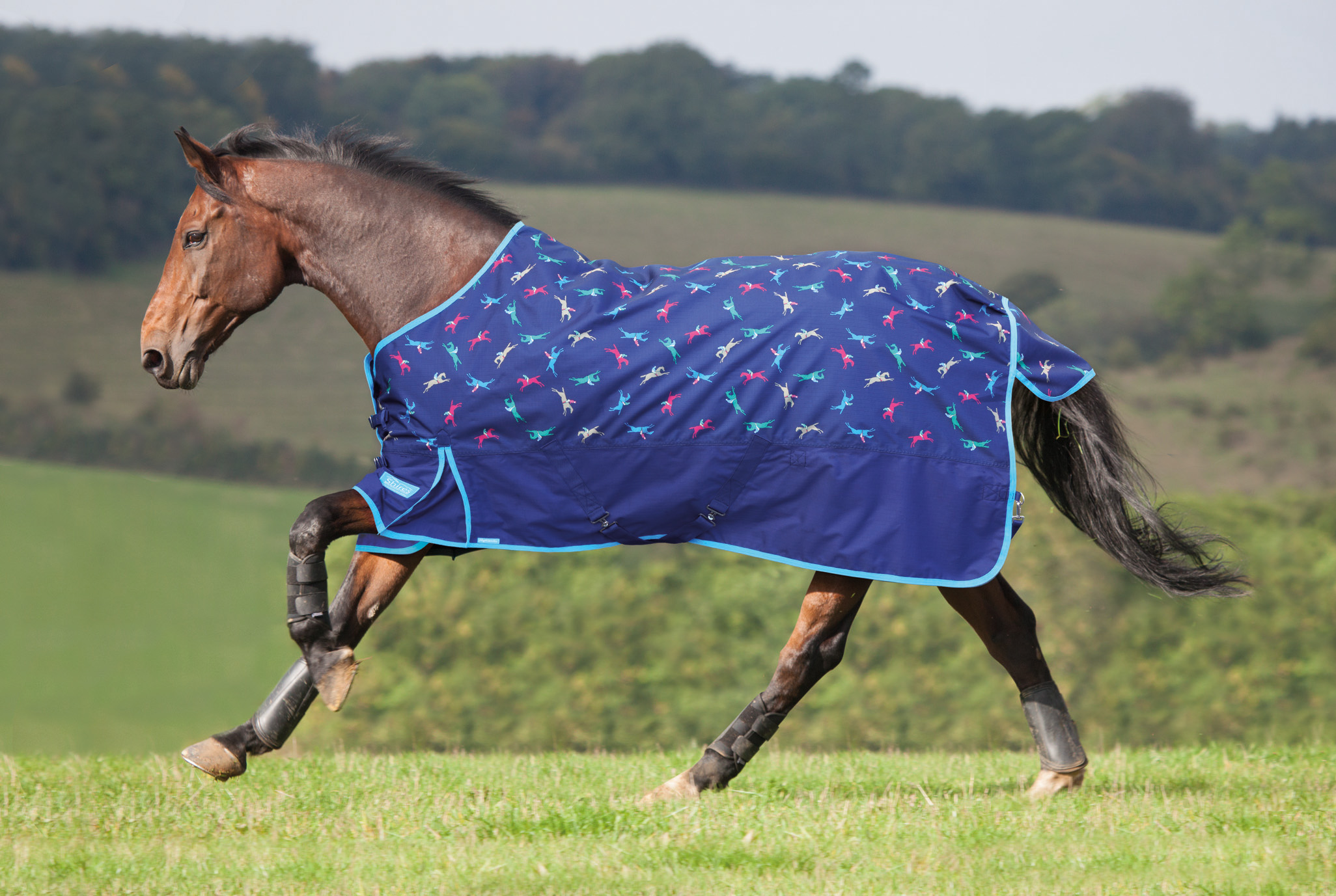 Shires Blankets