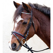 Waldhausen Star Sparkle Hearts Pony Bridle