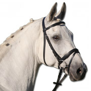 Star Padded Lifestyle Bridle