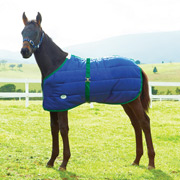 WeatherBeeta 420D Foal Blanket